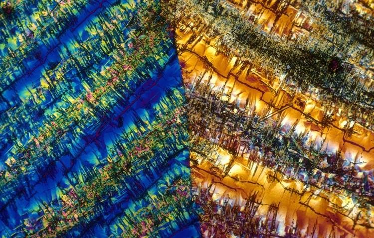 Коктейли под микроскопом 6