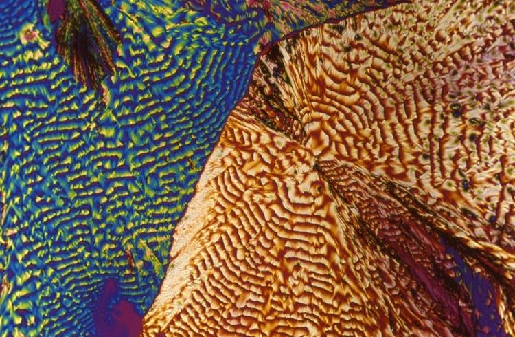 Коктейли под микроскопом 1