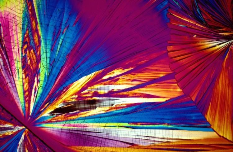 Коктейли под микроскопом 7